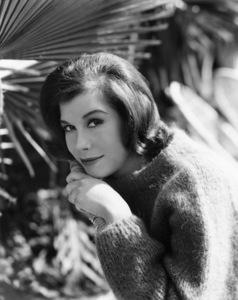 Mary Tyler Moore at homecirca 1963Photo by Gabi Rona - Image 0645_0156