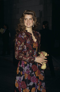 """Brooke Shields at """"The 14th Annual People"""