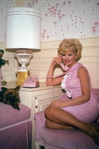 Connie Stevenscirca 1965 - Image 0658_0008