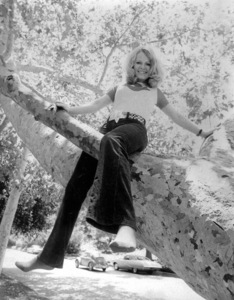 Sally Struthers in a tree at UCLA Gardensc. 1973 © 1978 Chester Maydole - Image 0659_0062