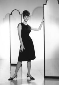 Lesley Ann Warrencirca 1960sPhoto by Gabi Rona - Image 0665_0011