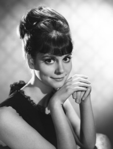 Lesley Ann Warrencirca 1960sPhoto by Gabi Rona - Image 0665_0015