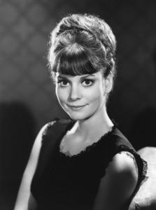 Lesley Ann Warrencirca 1960sPhoto by Gabi Rona - Image 0665_0016