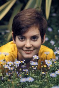 Lesley Ann Warrencirca 1968 © 1978 Gunther - Image 0665_0024