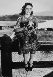 """Elizabeth Taylor during the filming of """"National Velvet""""1945**R.C.MPTV - Image 0712_0110"""