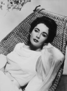 Elizabeth Taylorc. 1955MPTV - Image 0712_2136
