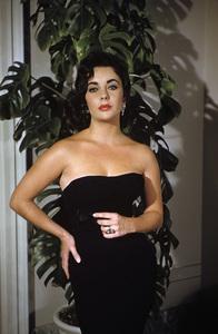 Elizabeth Taylor circa 1956© 1978 Sanford Roth / A.M.P.A.S. - Image 0712_2267