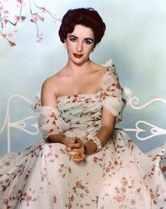 Elizabeth Taylorcirca 1955**I.V. - Image 0712_5093
