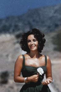 """""""Suddenly, Last Summer"""" Elizabeth Taylor 1959 Columbia Pictures ** I.V. - Image 0712_5223"""