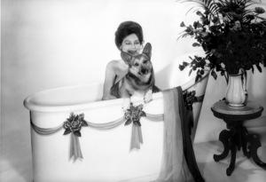 Ava Gardner with her Corgi1971© 1978 Wallace Seawell - Image 0713_0627