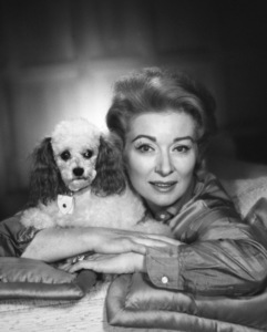 Greer Garson with her pet poodle1958 © 1978 Eric Skipsey - Image 0714_0804
