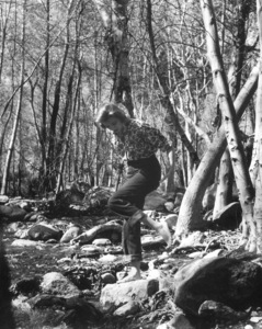 Grace Kellyc. 1954 © 1978 Bud Fraker**I.V. - Image 0724_0324