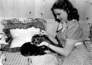 Judy Garlandc. 1938**I.V. - Image 0733_2170
