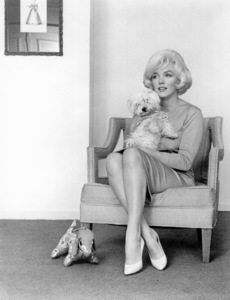 Marilyn Monroe at theBeverly Hills Hotel with her pet  Maf Honey,a pet gift from Frank Sinatra, 1961. © 1978 Eric Skipsey - Image 0758_0325