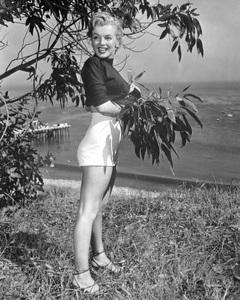Marilyn Monroecirca 1950** I.V. - Image 0758_1050