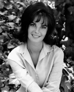 Natalie Wood, c. 1960. © 1978 Gene Trindl - Image 0764_0309
