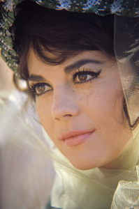 """""""The Great Race""""Natalie Wood1965© 1978 Bob Willoughby - Image 0764_0471"""