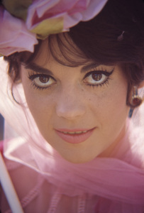 """""""The Great Race""""Natalie Wood1965© 1978 Bob Willoughby - Image 0764_0472"""