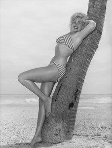 Jayne Mansfield on vacation in Miami Beach, Florida1961 - Image 0774_0545