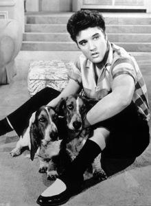 Elvis Presley, c. 1956. - Image 0818_0468