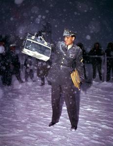 Elvis Presley1960 Germany**I.V. - Image 0818_0609