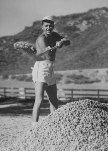 Ronald Reagan at his ranch in Northridge CaliforniaC. 1948MPTV - Image 0871_0105