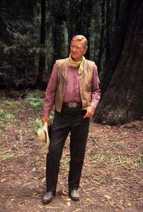 John Wayne, 1978. © 1978 David Sutton - Image 0898_3199