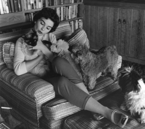 Jean Simmons at Home4/14/1955 © 1978 Sid Avery - Image 0956_0051
