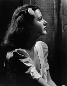 "Hedy Lamarr from ""Tortilla Flat""circa 1942 - Image 0958_0123"
