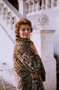 Sophia Loren, c. 1959. © 1978 Sanford Roth/AMPAS - Image 0959_0233