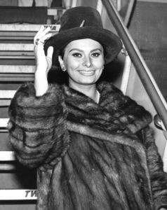 Sophia Loren, c. 1967. - Image 0959_2099