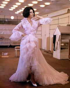 Sophia Lorencirca 1965**I.V. - Image 0959_2140
