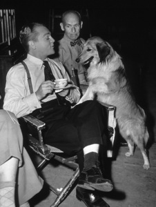 "James Cagney, James Gleason, Mr. Trouble (Dog) on The Set of ""Come Fill The Cup""1951 WarnerPhoto By Mac Julian - Image 0969_0017"