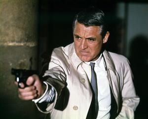 """""""Charade""""Cary Grant1963 UniversalPhoto by Millard**I.V. - Image 10193_0005"""