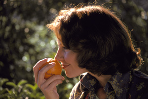 Food / Sunkist / Mom1974 © 1978 Sid Avery - Image 10370_0450