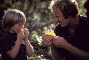 Food / Sunkist / Family1974 © 1978 Sid Avery - Image 10370_0454