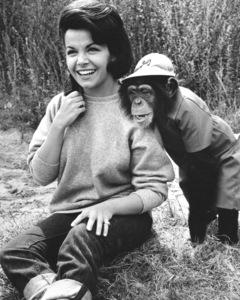 """""""The Monkey"""