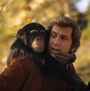 """""""Me and the Chimp""""Ted Bessell1972** H.L. - Image 10827_0001"""