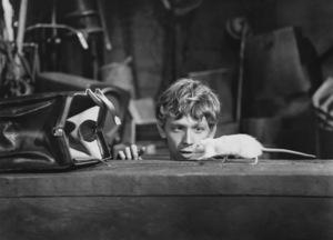 """Willard""Bruce Davidson1971 Cinerama - Image 10906_0007"