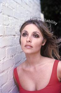 Sharon Tate1967© 1978 Gunther** J.C.C. - Image 11514_0045