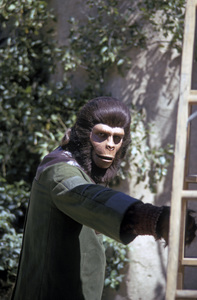 """""""Planet of the Apes""""1974 © 1978 Gene Trindl - Image 1152_0029"""