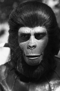 """Planet of the Apes"" Roddy McDowall1974© 1978 Wynn Hammer - Image 1152_0030"