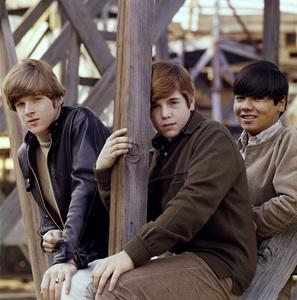 Dino, Desi and Billy (Dean Paul Martin, Desi Arnaz Jr., Billy Hinsche)1966 © 1978 Ed Thrasher - Image 12526_0007
