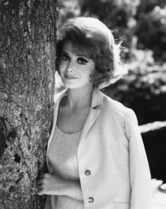 "Cara Williams from ""Pete and Gladys""circa 1960Photo by Gabi Rona - Image 13298_0002"