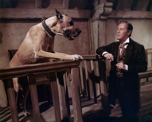 """Dr. Doolittle""Rex Harrison1967© 1978 Ted Allan - Image 1336_0035"