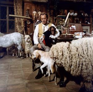 """Dr. Doolittle""Rex Harrison1967© 1978 Ted Allan - Image 1336_0043"