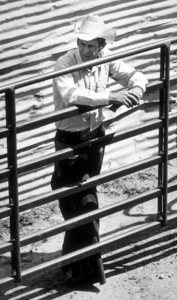 """Junior Bonner""Steve McQueen1972 ABC / Booth-Gardner © 1978 Bill AveryMPTV - Image 1340_0009"