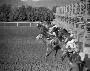 Hollywood Park Racetrackcirca 1950 © 1978 Kirby Kean - Image 13475_0005