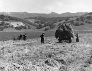 Los Angeles Historical Sepulveda Blvd. and Magnolia in the San Fernando Valley 1937 © 1978 Max Tatch - Image 13480_0048