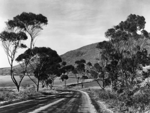 Los Angeles Historical Rolling Hills, CA 1937 © 1978 Max Tatch - Image 13480_0051